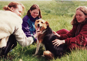 Akranes_dogfriends_s